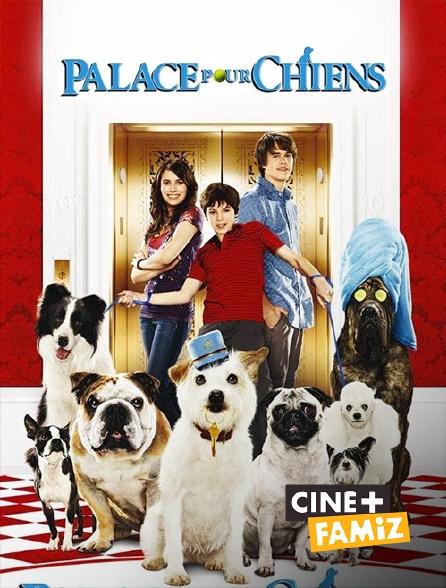 Ciné+ Famiz - Palace pour chiens