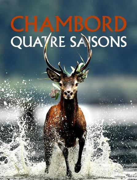 Chambord, quatre saisons