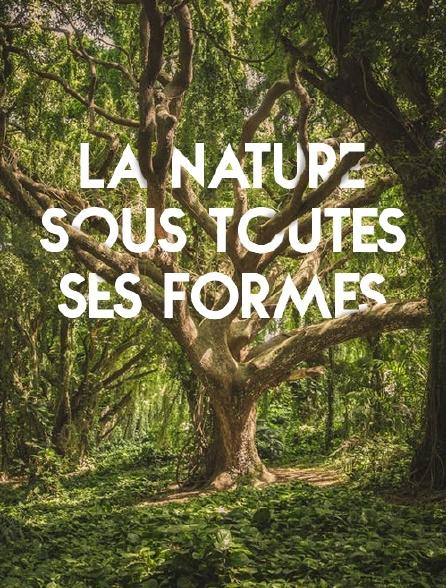La nature sous toutes ses formes