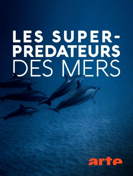 Arte - Les super-prédateurs des mers
