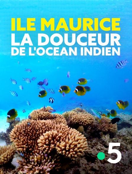France 5 - Ile Maurice, la douceur de l'océan Indien