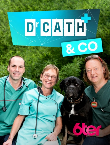 6ter - Dr Cath & Co
