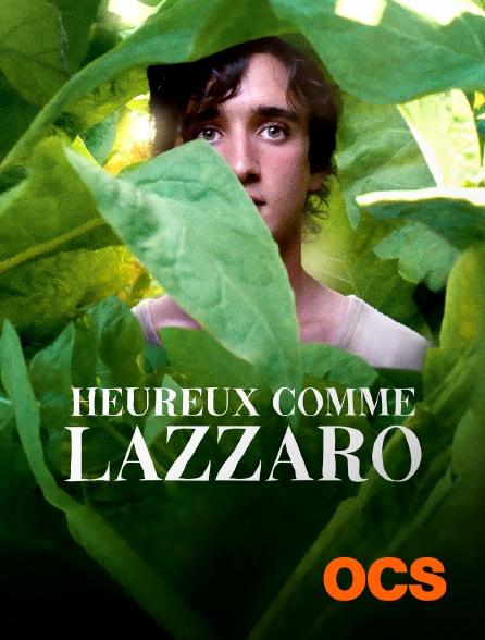 OCS - Heureux comme Lazzaro
