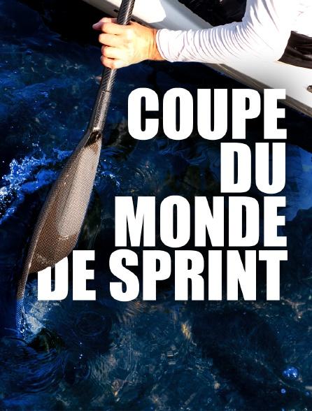 Coupe du monde de sprint