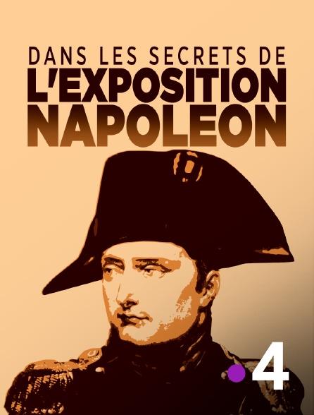 France 4 - Dans les secrets de l'exposition Napoléon