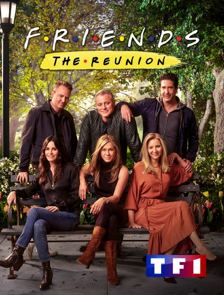TF1 - Friends : the reunion