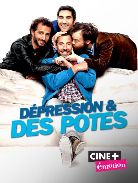Ciné+ Emotion - Dépression et des potes