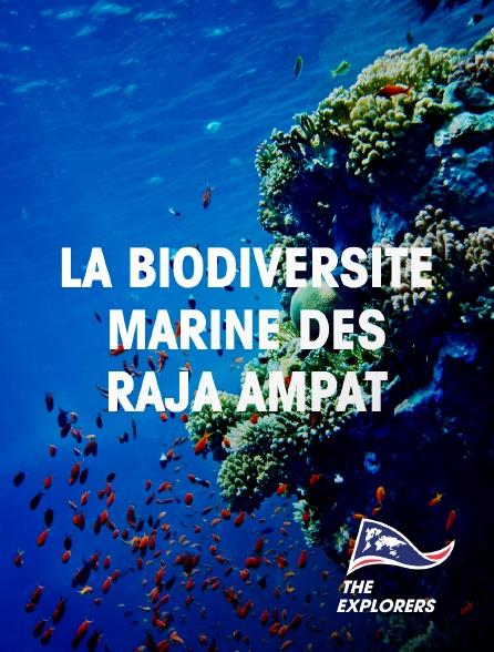 The Explorers - La biodiversité marine des Raja Ampat