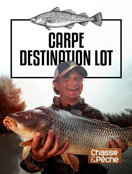 Chasse et pêche - Carpe, destination Lot