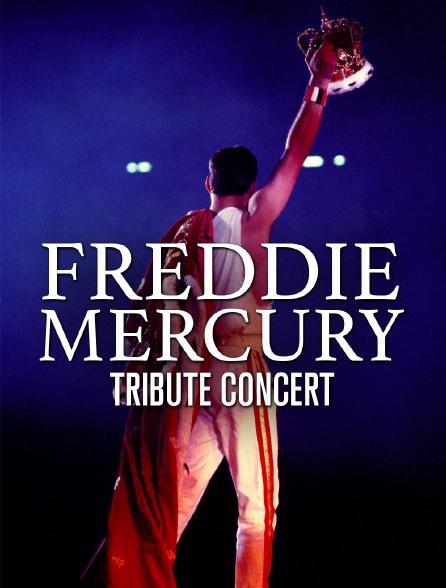 Freddie Mercury : Tribute Concert