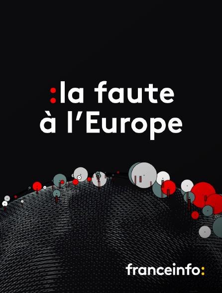 franceinfo: - La faute à l'Europe