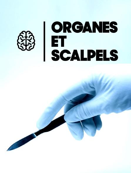 Organes et scalpels