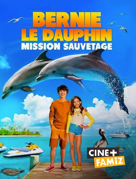 Ciné+ Famiz - Bernie le dauphin 2
