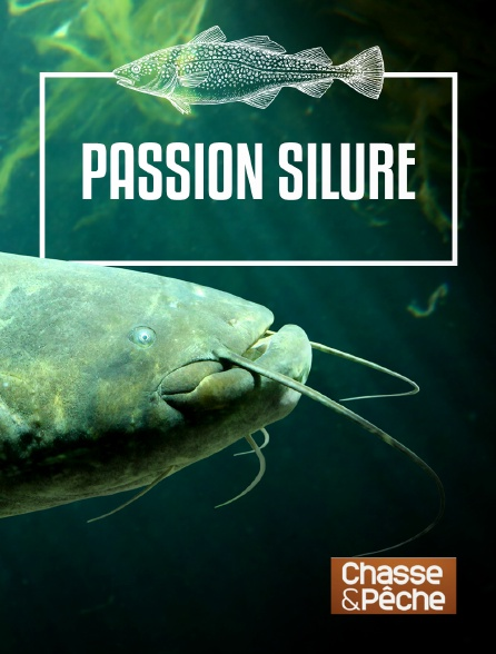 Chasse et pêche - Passion silure
