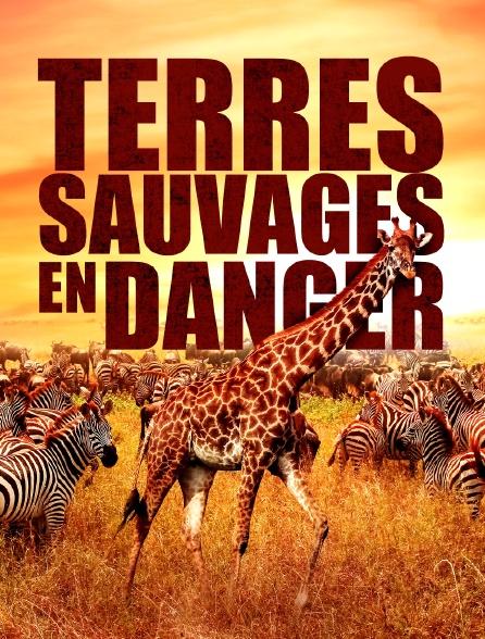 Terres sauvages en danger