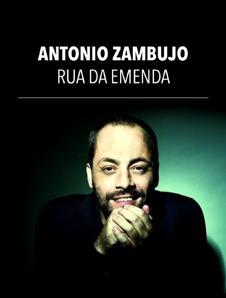 António Zambujo : Rua da Emenda