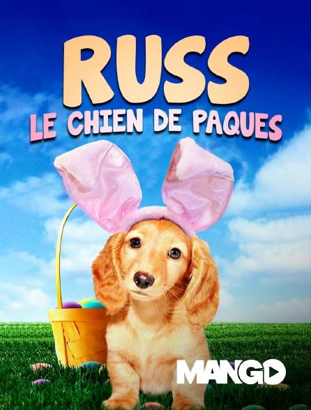 Mango - Russ, le chien de Pâques