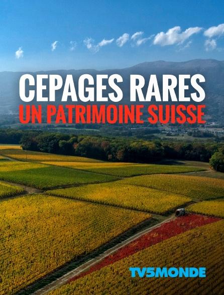 TV5MONDE - Cépages rares : un patrimoine suisse