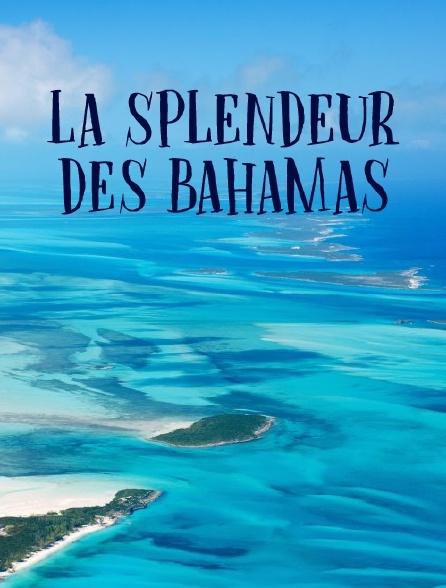 La splendeur des Bahamas
