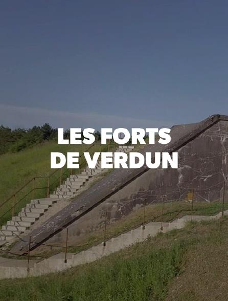 Les forts de Verdun