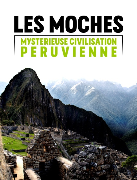 Les Moches, mystérieuse civilisation péruvienne