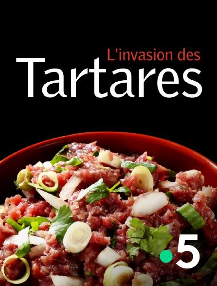 France 5 - L'invasion des tartares