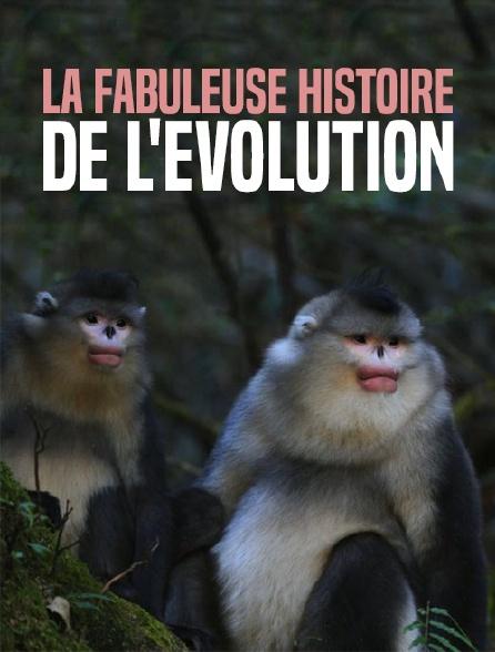La fabuleuse histoire de l'évolution