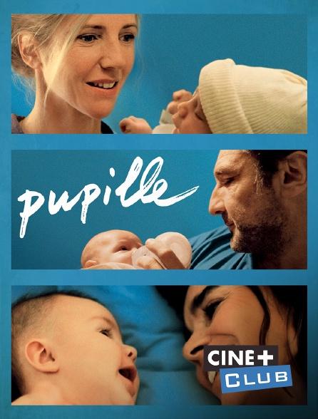 Ciné+ Club - Pupille