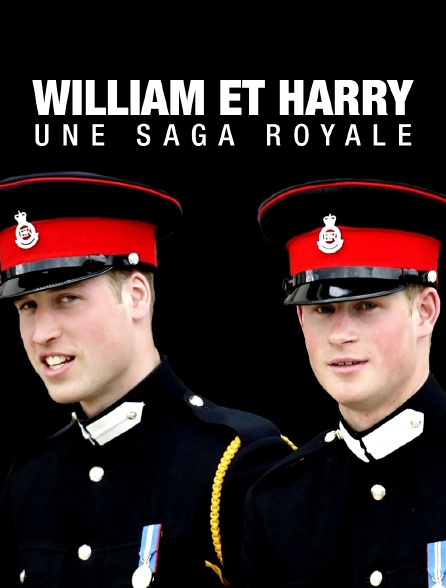 William et Harry, une saga royale