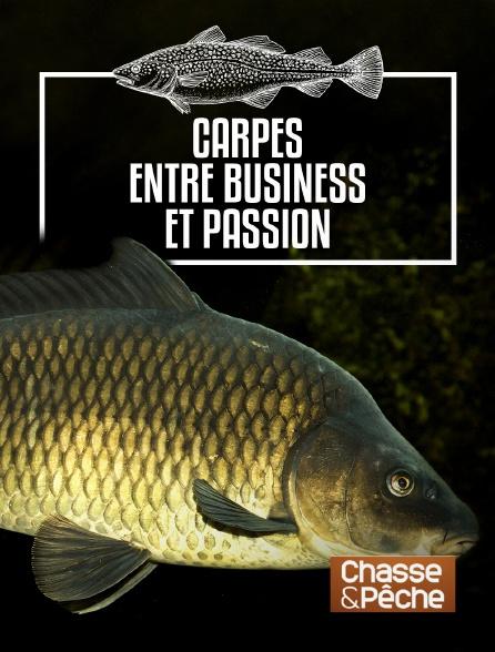 Chasse et pêche - Carpes, entre business et passion