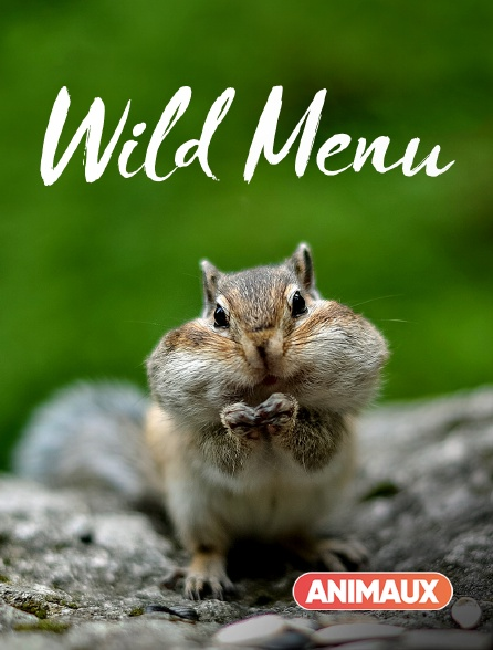 Animaux - Wild Menu