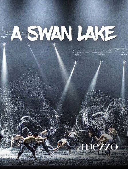 Mezzo - A Swan Lake