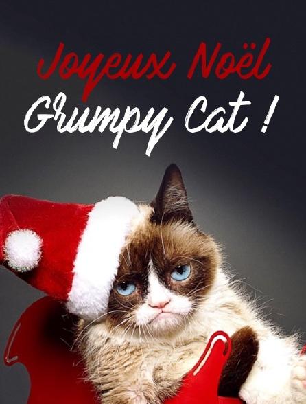 Joyeux Noël Grumpy Cat !