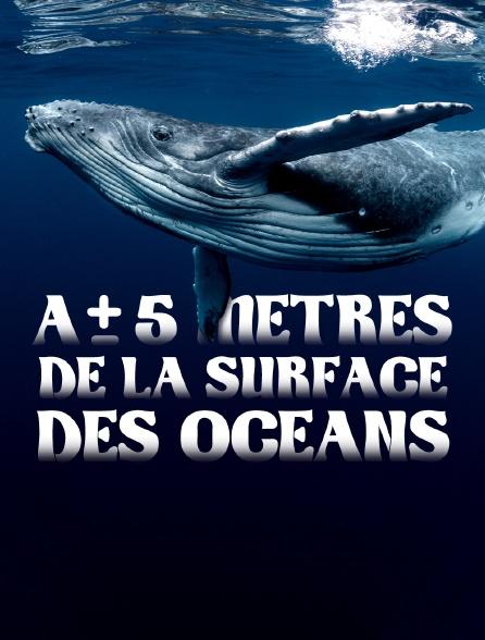 A + ou - 5 mètres de la surface des océans *2015