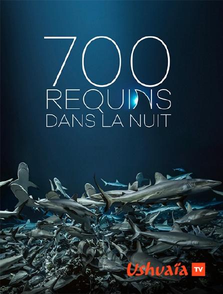 Ushuaïa TV - 700 requins dans la nuit