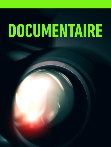 Documentaire selon annonce