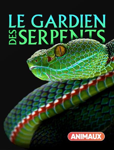 Animaux - Le gardien des serpents