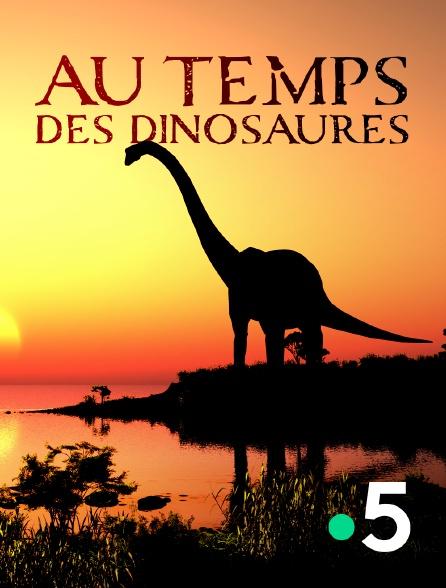 France 5 - Au temps des dinosaures