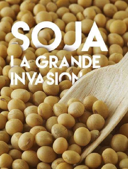 Soja, la grande invasion