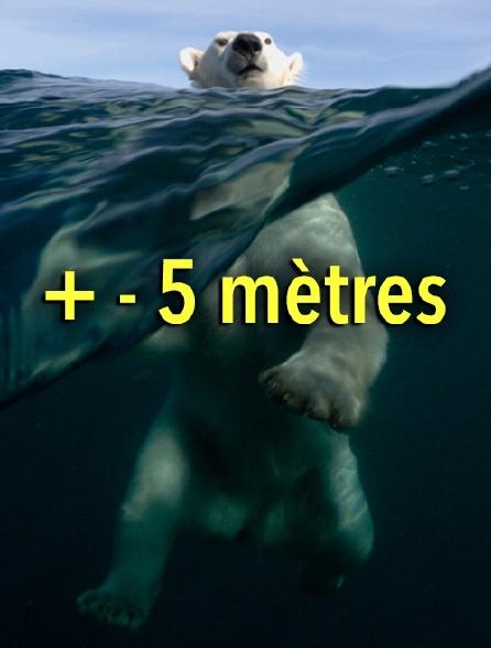 + - 5 mètres
