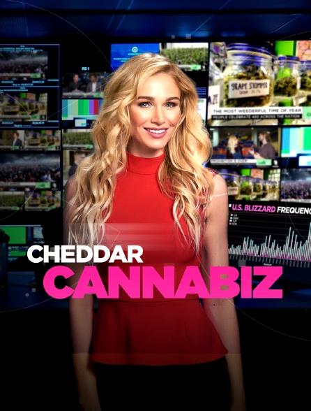 Cheddar's Cannabiz
