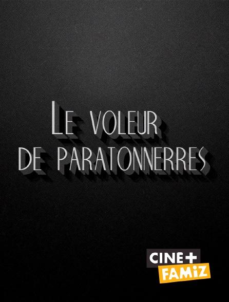 Ciné+ Famiz - Le voleur de paratonnerres