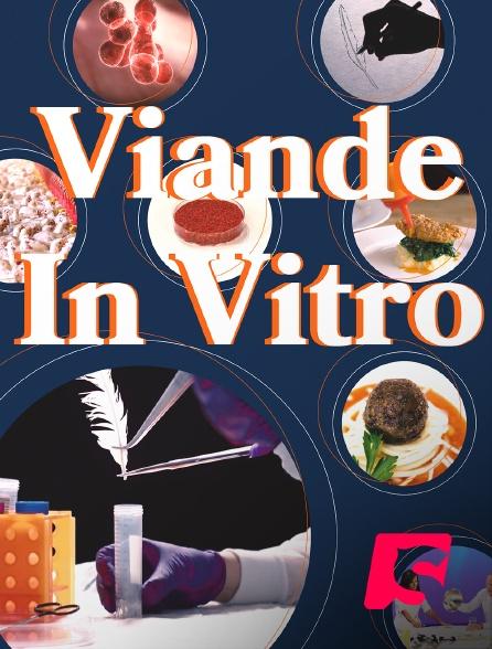 Spicee - Viande in vitro