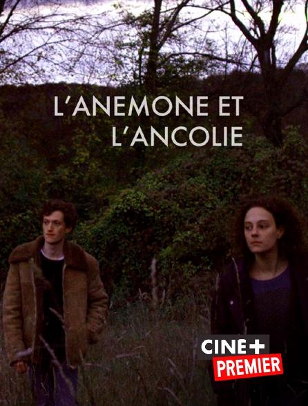 Ciné+ Premier - L'anémone et l'ancolie