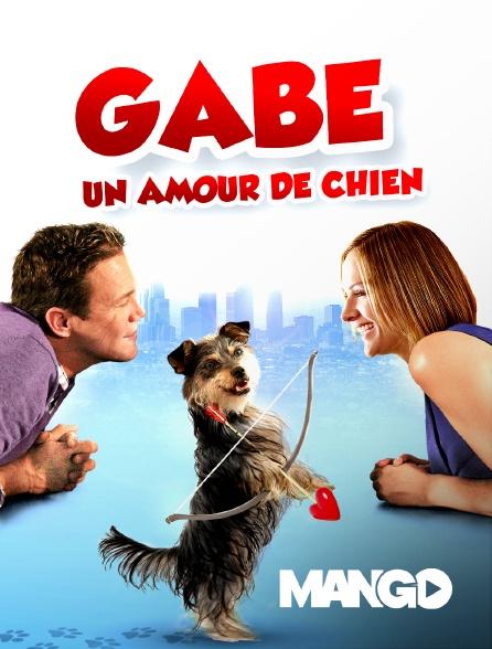 Mango - Gabe, un amour de chien