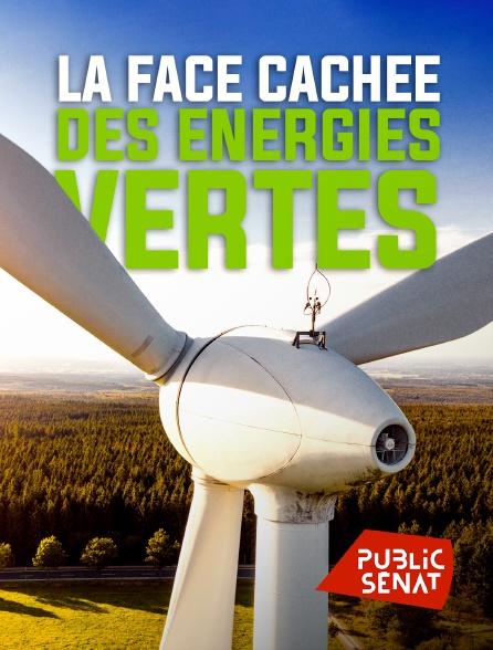 Public Sénat - La face cachée des énergies vertes