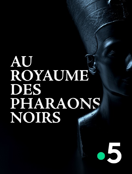France 5 - Au royaume des pharaons noirs