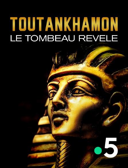 France 5 - Toutankhamon, le tombeau révélé