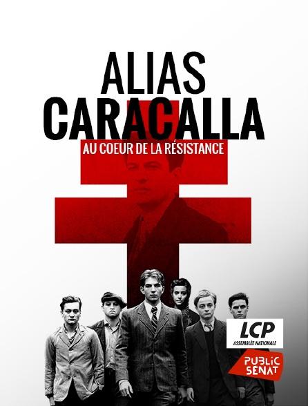 LCP Public Sénat - Alias Caracalla, au coeur de la Résistance