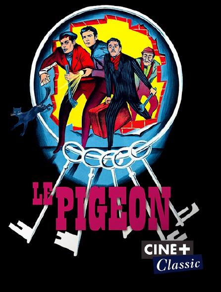 Ciné+ Classic - Le pigeon